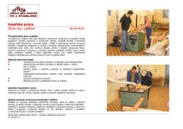 Tesařské práce  - Střední škola a základní škola, Havířov