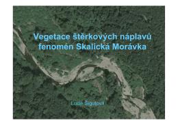 Vegetace štěrkových náplavů fenomén Skalická Morávka