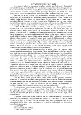 3. Ayşıl CİĞER - Gazi Ortaokulu 8. Sınıf / KAHRAMANMARAŞ