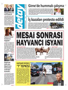 Mizanpaj 1 - Detay Kıbrıs