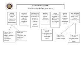 bilgi işlem birimi süreç akış şeması
