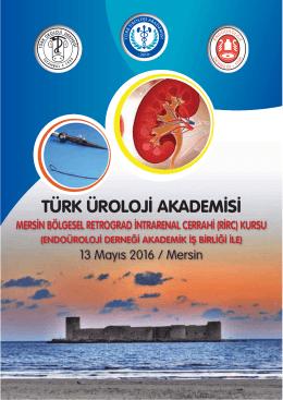 Mersin Bölgesel Retrograd İntrarenal Cerrahi