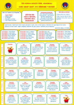 ted konya koleji özel anaokulu sarı sınıf mart ayı öğrenme takvimi